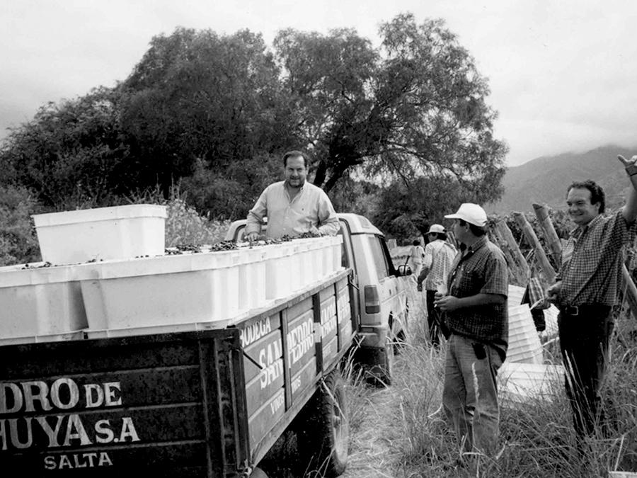 San Pedro de Yacochuya 2017 - Rolland Collection