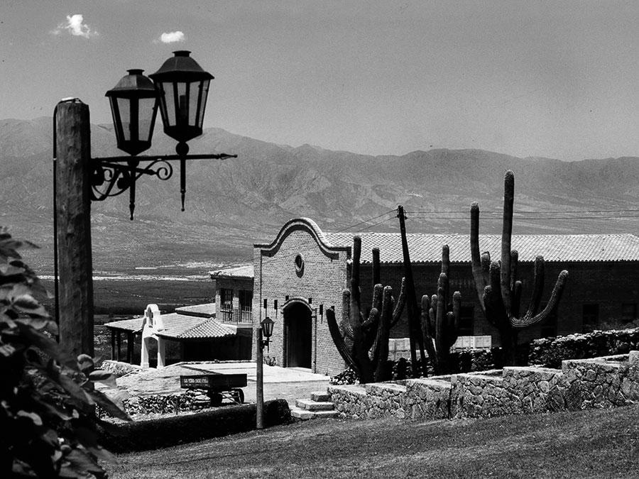 San Pedro de Yacochuya 2019 - Rolland Collection